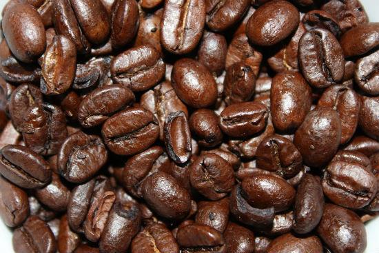 CoffeeGrowingIlocos